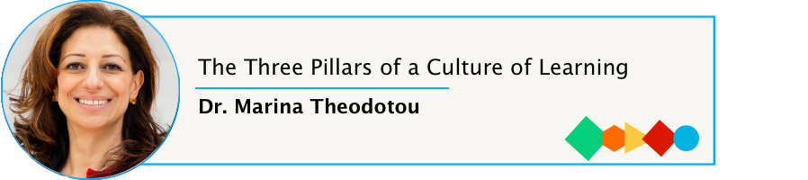 Episode 62: The Three Pillars of a Culture of Learning with Dr. Marina Theodotou